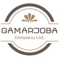 Gamarjoba Logo
